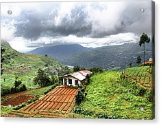 Hill Country Sri Lanka Acrylic Print by Sanjeewa Marasinghe