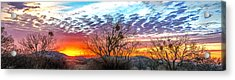 Hill Country Sunset Acrylic Print by Wally Taylor