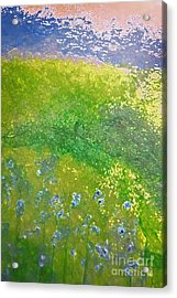 Hillside By Jrr Acrylic Print by First Star Art
