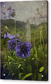 Acrylic Print featuring the photograph Hillside Flowers by Kandy Hurley