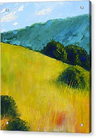 Hillside Prairie Acrylic Print by Nancy Merkle
