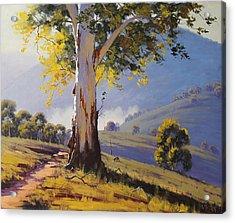 Hilly Australian Landscape Acrylic Print by Graham Gercken
