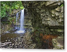 Acrylic Print featuring the photograph Hilton Falls In Summer by Gary Hall