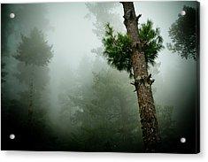 Himalyas Mist Acrylic Print by Raimond Klavins