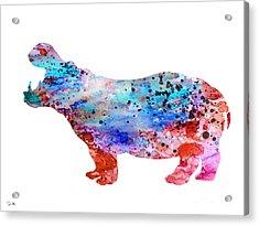 Hippo 3 Acrylic Print
