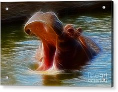 Hippo Yawn Fractal Acrylic Print by Gary Gingrich Galleries