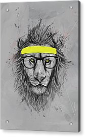 Hipster Lion Acrylic Print