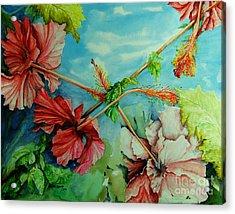 Hiroko's Hibiscus 3 Acrylic Print