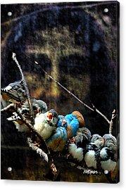 His Eye Is On The Sparrow Acrylic Print