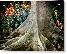 His Signature Lies In All Acrylic Print