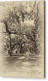 Historic Lane Antique Sepia Acrylic Print by Steve Harrington