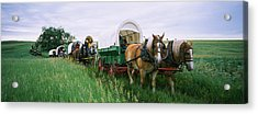 Historical Reenactment, Covered Wagons Acrylic Print by Panoramic Images