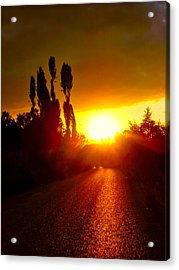 Acrylic Print featuring the photograph Hit The Road Jack by Zafer Gurel
