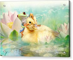 Hitching A Ride Acrylic Print by Trudi Simmonds
