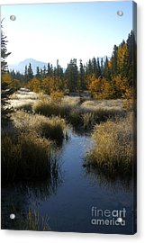 Hoar Frost And Stream Acrylic Print