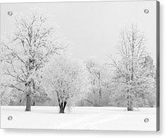 Hoar Frost Morning Acrylic Print