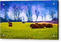 Hocking Hills 10 Acrylic Print