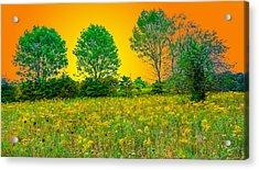 Hocking Hills 7 Acrylic Print
