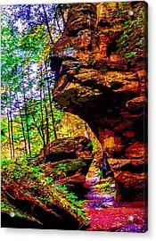 Hocking Hills Sphinx Head Acrylic Print by Brian Stevens