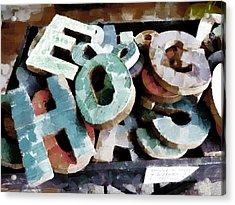 HOG Acrylic Print by Steve Taylor