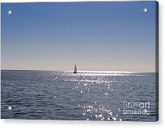Acrylic Print featuring the photograph Hold My Calls by Kevin Ashley
