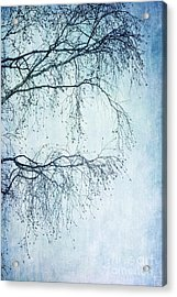 Hold On Till Spring Will Come Acrylic Print