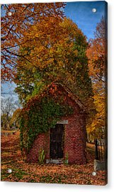 Acrylic Print featuring the photograph Holding Up The  Fall Colors by Jeff Folger