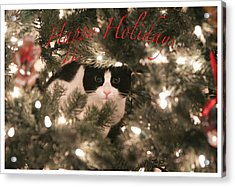 Holiday Card Acrylic Print by Shoal Hollingsworth