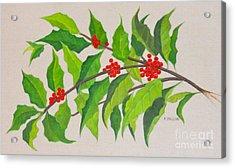 Holiday Holly Acrylic Print by Frances  Dillon