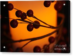 Acrylic Print featuring the photograph Holiday Warmth 2 by Linda Shafer
