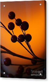 Acrylic Print featuring the photograph Holiday Warmth 3 by Linda Shafer