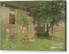 Hollyhocks Nantucket Acrylic Print by John Joseph Enneking