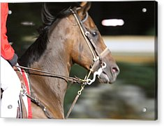 Hollywood Casino At Charles Town Races - 121254 Acrylic Print by DC Photographer
