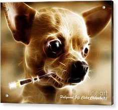 Hollywood Fifi Chika Chihuahua - Electric Art - With Text Acrylic Print by Wingsdomain Art and Photography