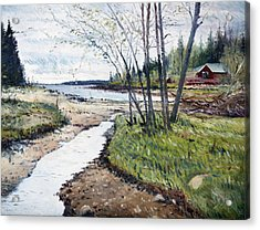 Holmsund Sweden 2014 Acrylic Print by Enver Larney