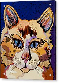 Acrylic Print featuring the painting Holy Cat by Bob Coonts