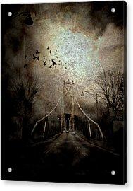 Homeward Bound Acrylic Print by Janet Kearns
