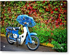 Honda With Umbrella Acrylic Print by Olivier Le Queinec