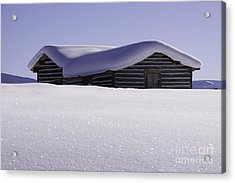Honey Where Is The Snow Shovel? Acrylic Print by Kristal Kraft