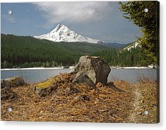 Hood Rock Acrylic Print by Arthur Fix