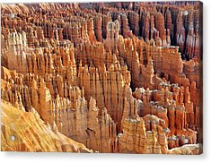 Acrylic Print featuring the photograph Hoodoos Of Bryce Canyon by Dan Myers