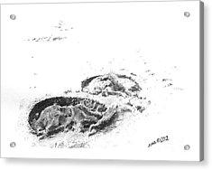 Hoof Prints Acrylic Print