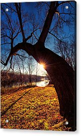 Acrylic Print featuring the photograph Hook Or Crook by Robert McCubbin
