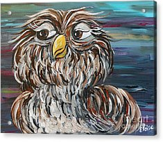 Hoo's Your Daddy Acrylic Print by Eloise Schneider