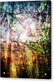 Acrylic Print featuring the mixed media Hoosier Country Opus 1 by Sandy MacGowan