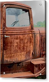 Acrylic Print featuring the photograph Hop In by Lynn Sprowl