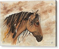 Hopa - Majestic Mustang Series Acrylic Print by AmyLyn Bihrle