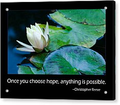 Hope Acrylic Print by Don Schwartz
