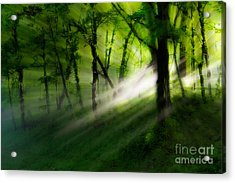 Hope Lights Eternal - A Tranquil Moments Landscape Acrylic Print by Dan Carmichael