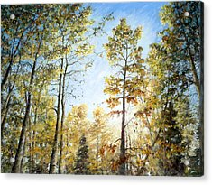 Hope Acrylic Print by Mary Giacomini